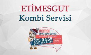 Etimesgut Kombi Servisi