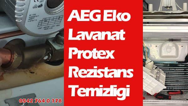 AEG Eko Lavanat Protex rezistans temizliği